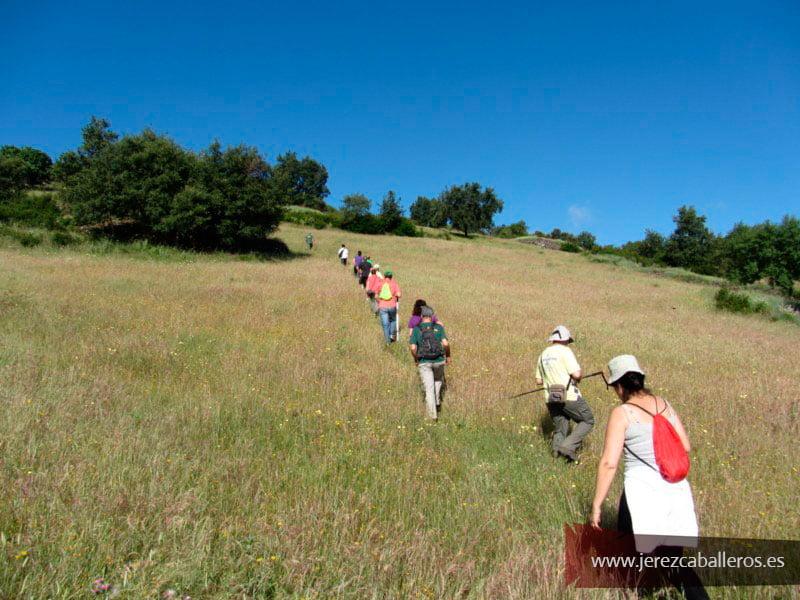 Ruta a la sierra de Buenavista