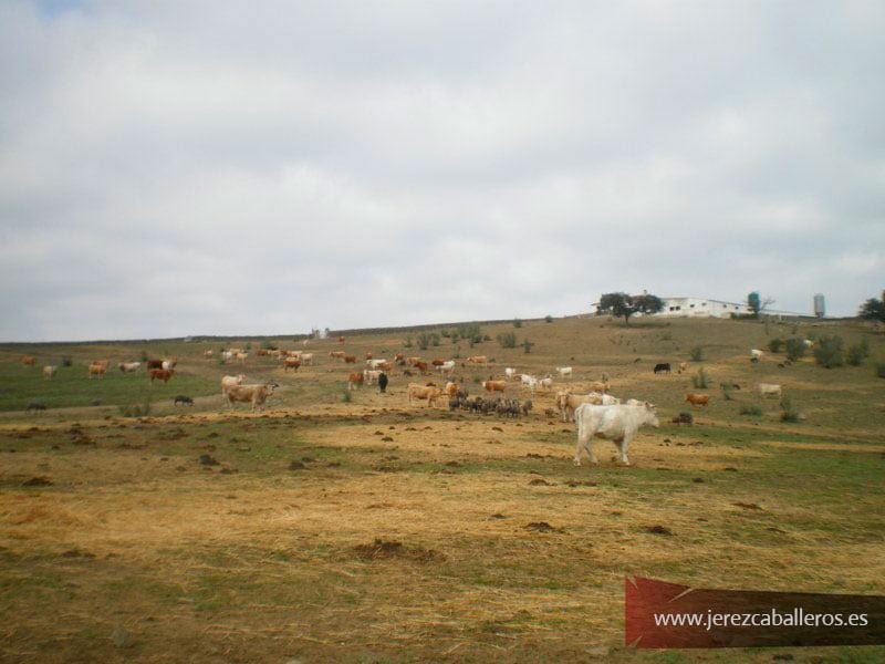 Ruta Santa María Matasanos