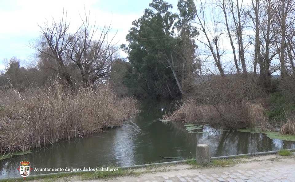 Río Ardila